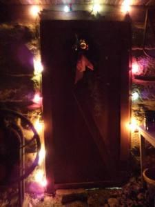 Christmas lights cellar door